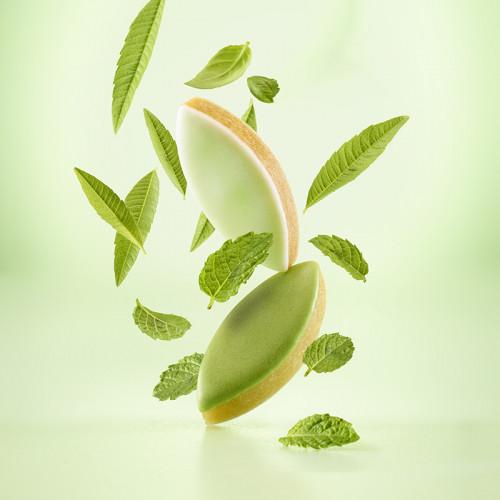 Calissons d'Exception menthe citron vert du Roy René
