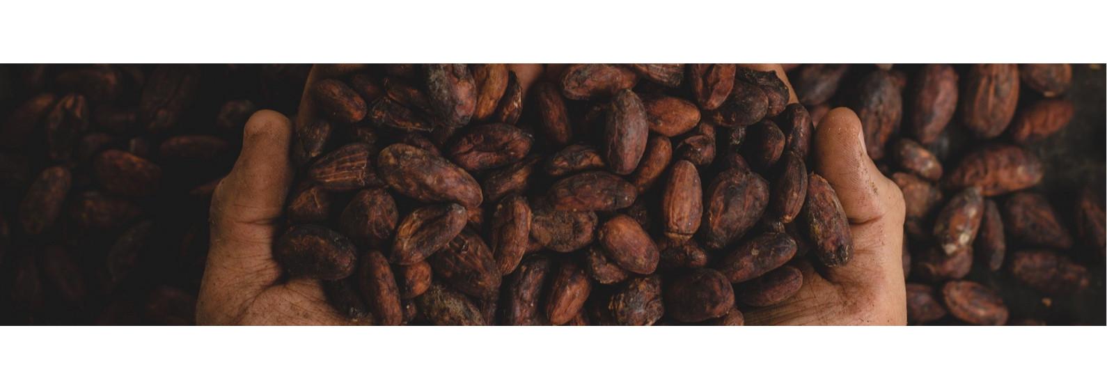 Chocolatées